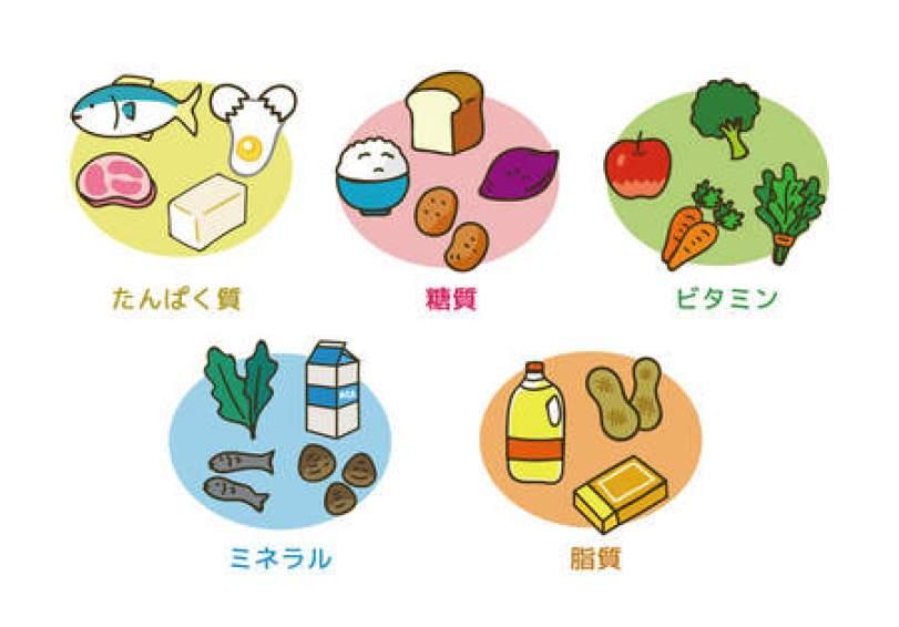 「五大栄養素」の画像検索結果