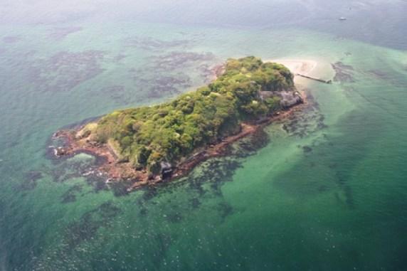 「横須賀市の無人島・猿島」の画像検索結果