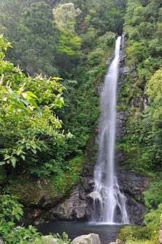 樽の滝(高知県) | 子供とお出かけ情報「いこーよ」