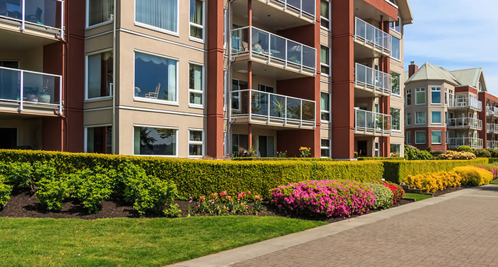 condo strata and homeowner association