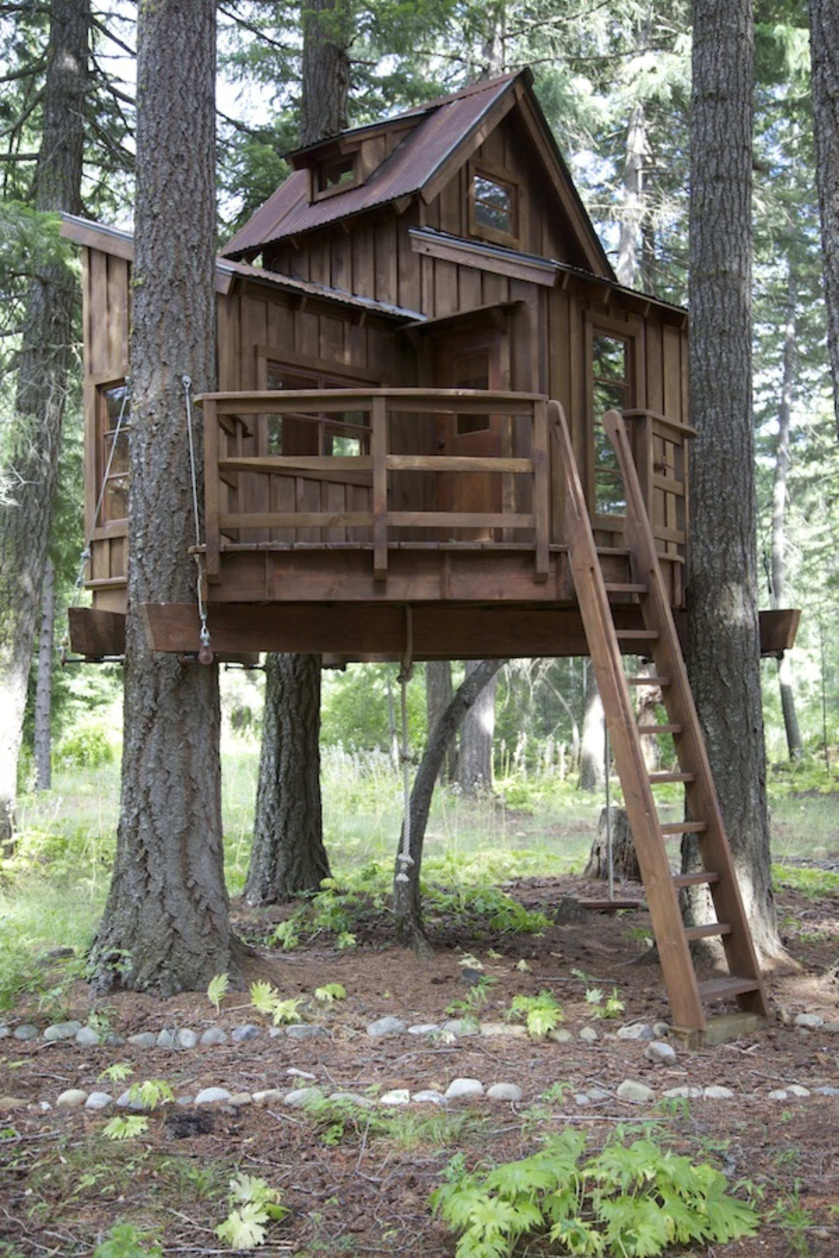 Treehouse Masters Pictures to Pin on Pinterest  PinsDaddy