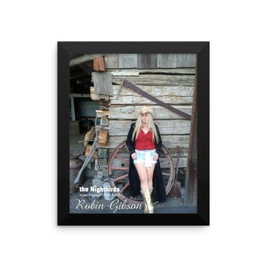 the Nightbirds Country Collection Robin Gibson Framed photo paper poster