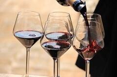 Associate Degree in Wine Business & Marketing