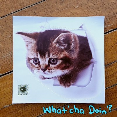 What'cha Doin'? Decal (F012)