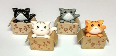 Neko's In Boxes
