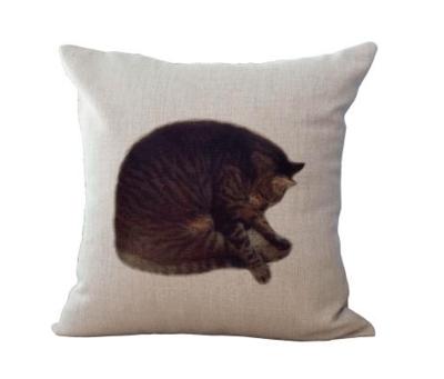 Tabby Cat Cushion Cover