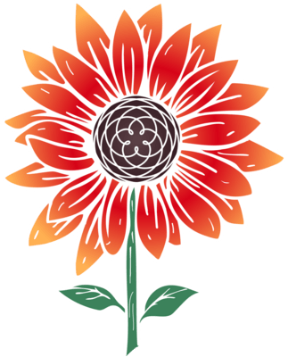 Reiki for Chronic Illness, Pain, and Mental Health