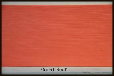 Coral Reef - pretty coral
