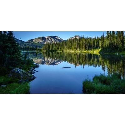 Mirror Lake -- Larey McDaniel