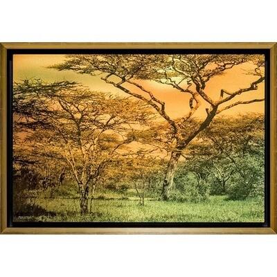 Magical Africa -- Jean Burnett