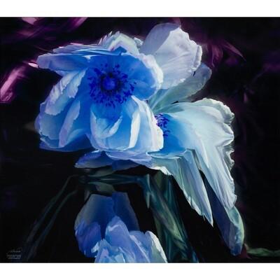Sleeping Beauty -- Jean Burnett