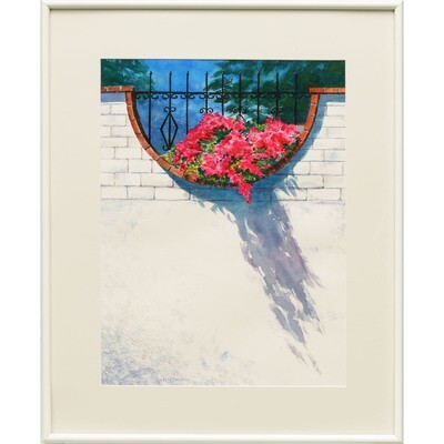Sombra Cascadas -- Nancy R Bradley