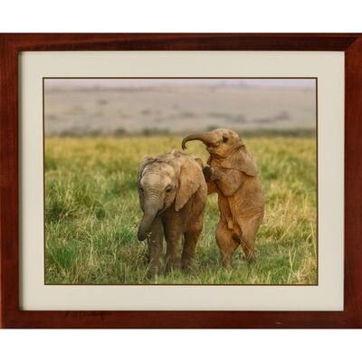 Elephant Kids -- Jeff Lane