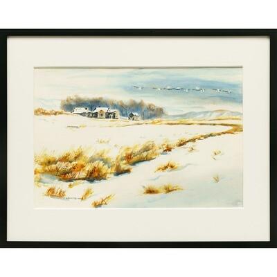 Snowgeese -- Joan Frey