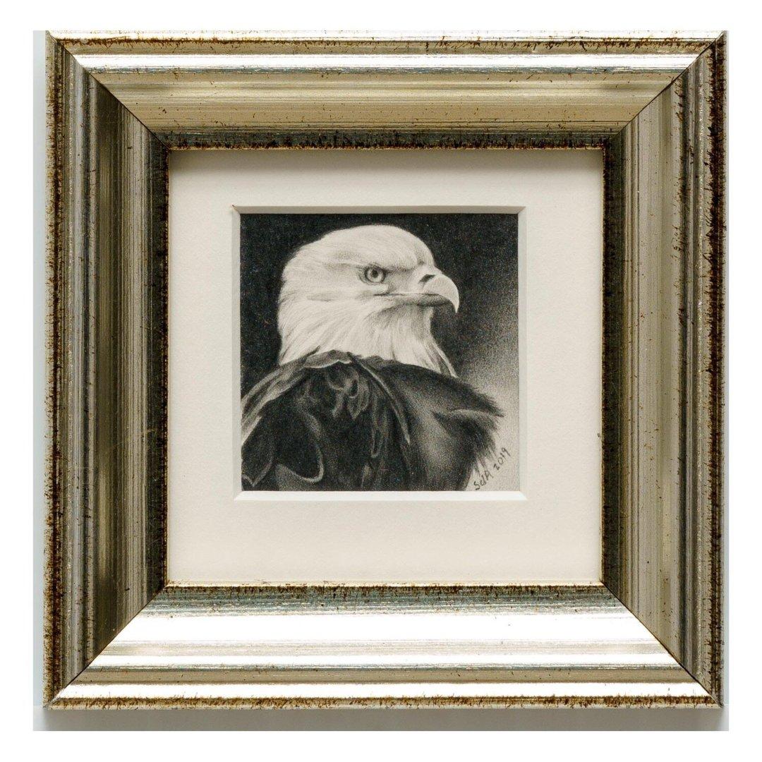 Adair, Sue deLearie -- Eagle Portrait