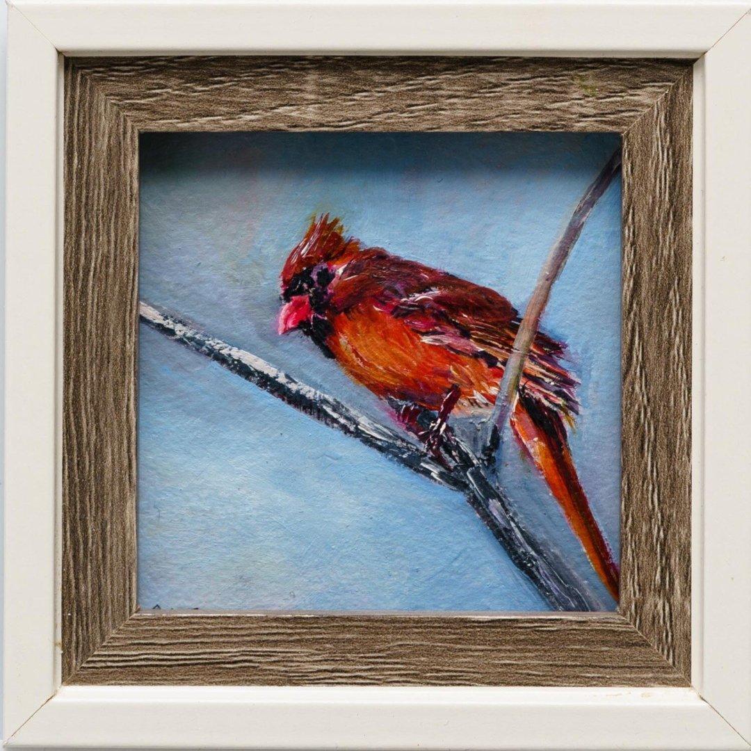 Berlin, Polly -- Little Cardinal