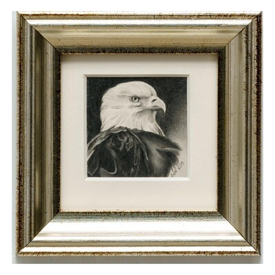 Adair, Sue deLearie -- Eagle Portrait