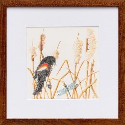 Red Winged Blackbird Defending Its Territory -- Sylvia Portillo