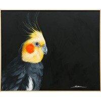Charlie the Cockatiel -- Sobia Shuaib