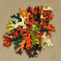 L'automne Inspiration 4 --  Geraldine Le Calvez
