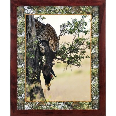 Leopard in Tree with Collage Border -- Jeff Lane