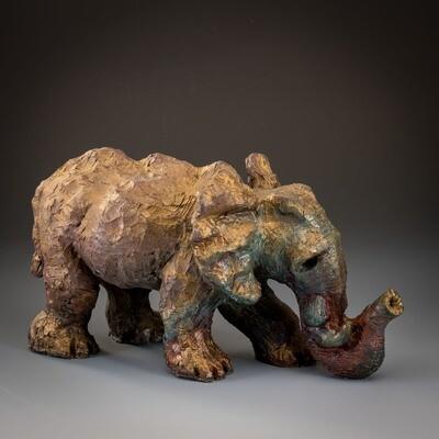 Baby Elephant -- Rachel Muller