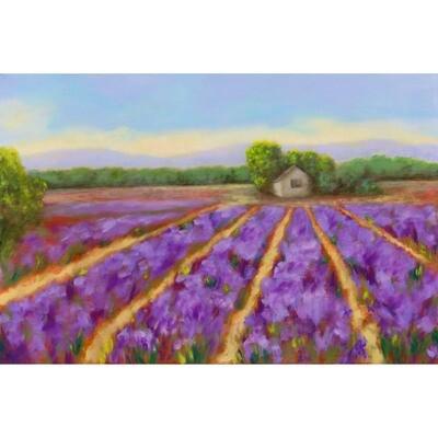 Lavender Field -- Hilda Bordianu