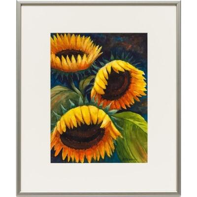 Sunshine -- Nancy R Bradley