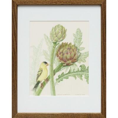 Goldfinch on Artichoke -- Sylvia Portillo