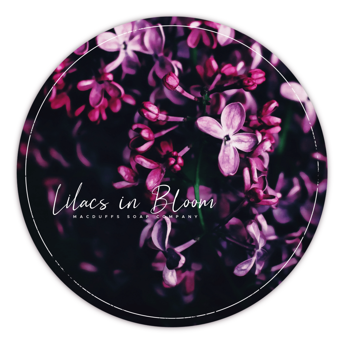 LILACS IN BLOOM SHAVE SOAP