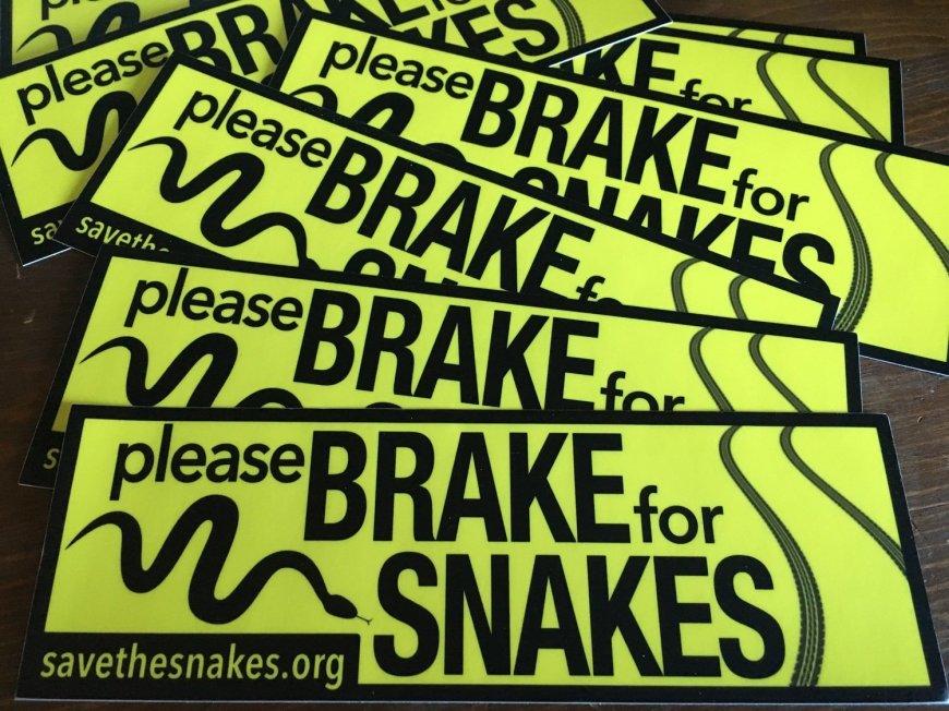 Brake For Snakes Bumper Sticker