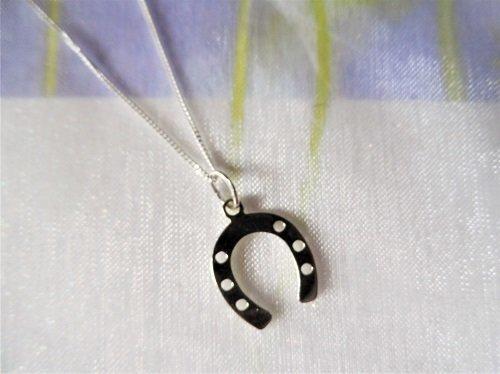 Lucky horseshoe charm necklace
