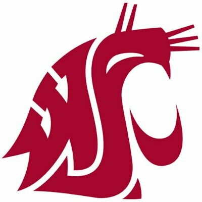 2018 Washington State - SL team sheet
