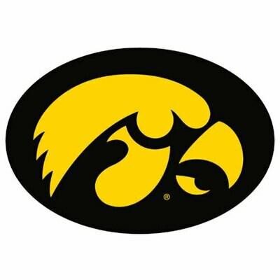2015 Iowa - SL team sheet