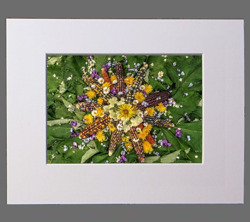 Wildflower Burdock Sun 8x10