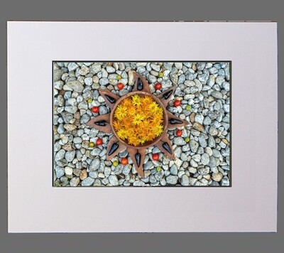 Radio Porcupine Star Matted Limited Edition