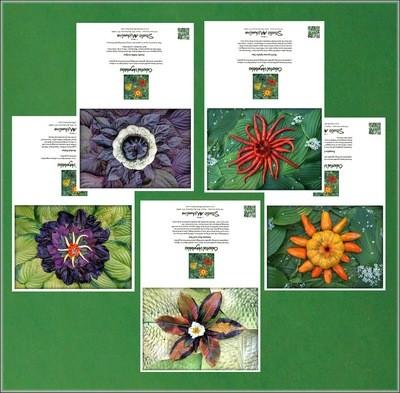 Celestial Vegetable Greeting Cards Set # 2