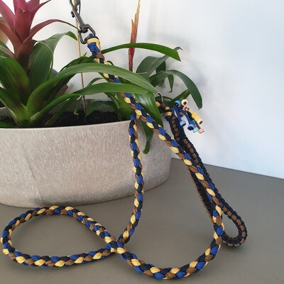 Blue/Yellow Paracord Leash