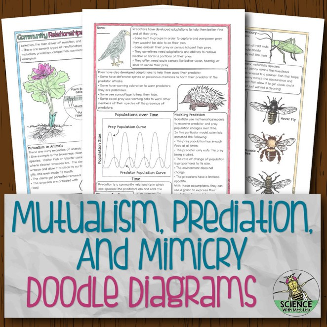 Mutualism Predation and Mimicry Doodle Diagrams