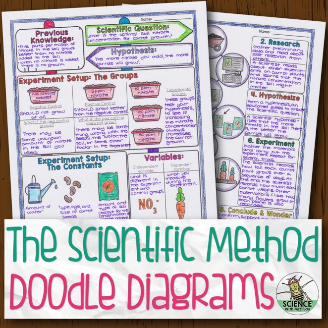 Scientific Method and Experiment Design Doodle Diagram