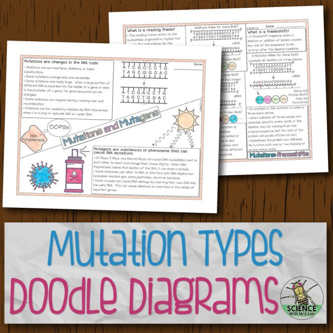 Mutation Types Doodle Diagrams