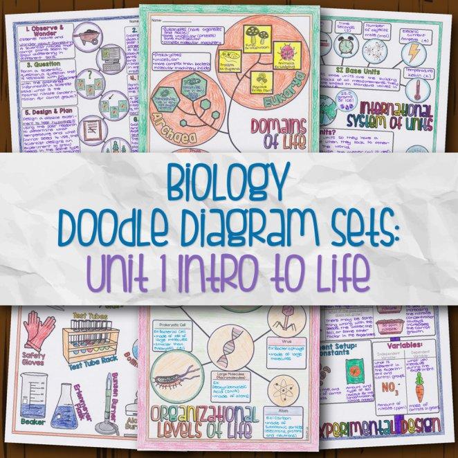 Biology Unit 1 Doodle Diagram Sets