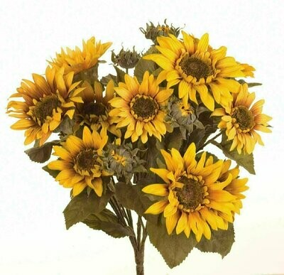 SBF04501 - Large Sunflower Bush X17 $14.95 each