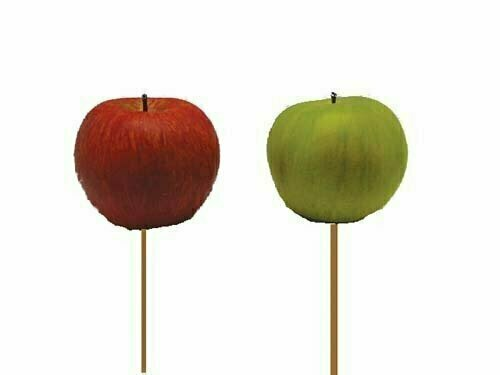 PPX2014 - 2 Assorted Color Natural Sized Apple Pick