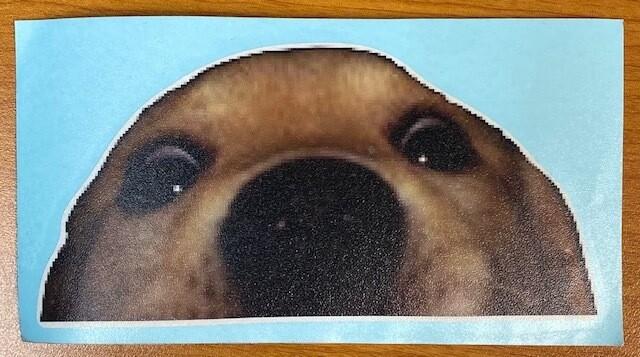 Peaking Dog Sticker