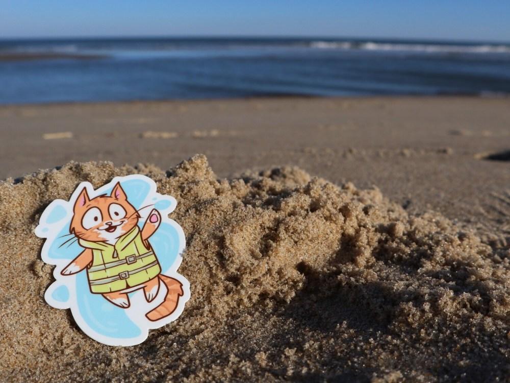Pip the Beach Cat in his Life-Vest 3