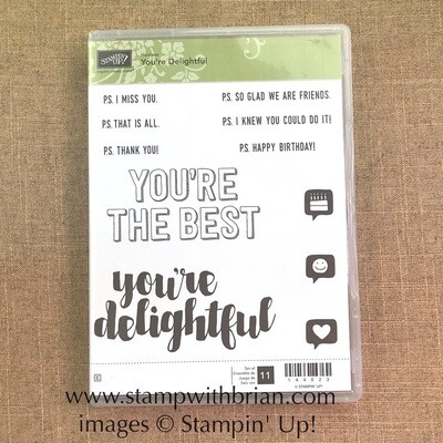 You're Delightful Clear-Mount Stamp Set