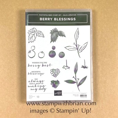 Berry Blessings Photopolymer Stamp Set - NEW