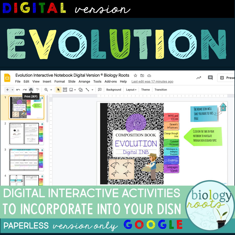Evolution Digital Interactive Activities