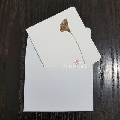 Lotus Seed Capsule